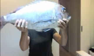 海信さんが釣った魚